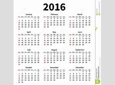 Simple 2016 Year Calendar On White Background Stock Vector