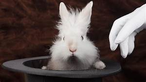 Miners Won U2019t Be Pulling Rabbits Out Of Hats In The March