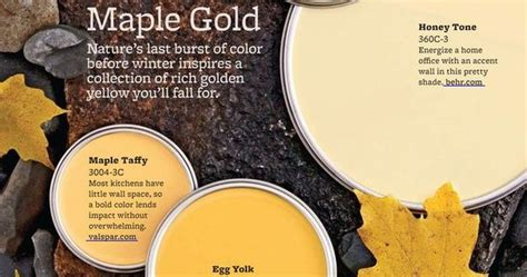imagine design 187 5 maple gold paint colors from better
