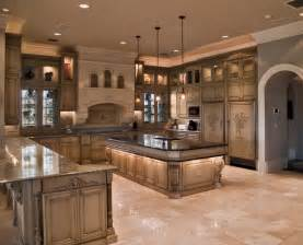 houzz kitchen ideas florida house traditional kitchen other metro by cabinet designs of central florida
