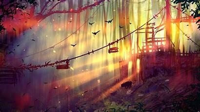 Landscape Forest Sun Rays Backgrounds Wallpapers Desktop