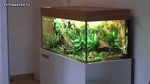 Aquarium Unterschrank Bauen : fettmastertv prototyp youtube ~ Watch28wear.com Haus und Dekorationen