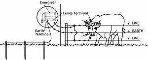 Another Question About Electrical Fence