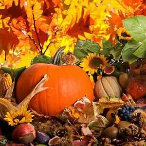 Schöne Herbstbilder Kostenlos : 37 frisch galerie von herbstbilder kostenlos herunterladen ~ A.2002-acura-tl-radio.info Haus und Dekorationen