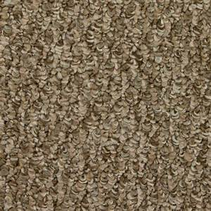 Shaw 1539 simpatico pattern berber carpet apple butter for Patterned berber carpet