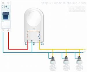 Branchement Detecteur De Mouvement : l 39 electricite est une forme de vie pour les hommes de ~ Dailycaller-alerts.com Idées de Décoration
