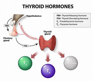 Incidence And Types Of Thyroid Cancer