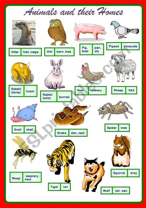 poster  animals   homes cheers  images