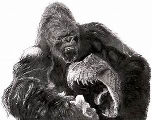 King Kong Drawings Pictures to Pin on Pinterest - PinsDaddy