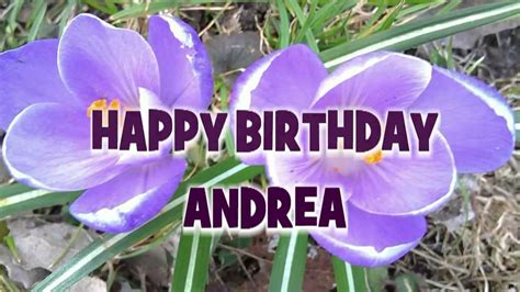 happy birthday andrea geburtstagsgruesse