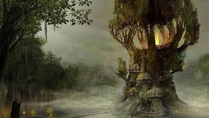 Tree God War Ascension Wallpapers Games Trees