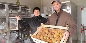 Tailler Les Kiwis : gaujac 47 un distributeur automatique de l gumes en plein village sud ~ Farleysfitness.com Idées de Décoration