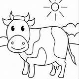 Coloring Cow Kleurplaat Koe Koeien Topkleurplaat sketch template