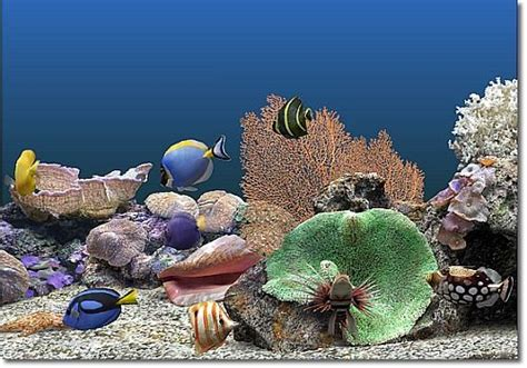 aquarium ecran de veille t 233 l 233 charger marine aquarium pour windows freeware