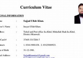 hd wallpapers msw hr resume samples for freshers