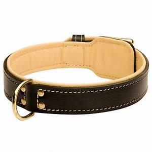 Hundehalsband Mit Namen Leder : halsband aus leder breit gepolstertes halsband 56 9 ~ Yasmunasinghe.com Haus und Dekorationen