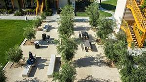 How landscape architects at SWA created the country39s largest ZeroNet Energy community at UC