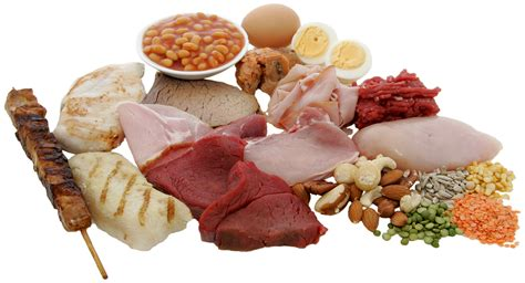 sauge cuisine protein requirements for athletes and mere mortals how