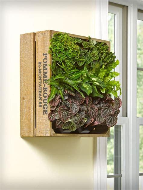 Deko Weinkisten Holz by Weinkiste Mit Pflanzen Vertikal An Der Wand Montieren