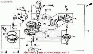 Honda Ch80 Elite 80 1987  H  Usa Carburetor