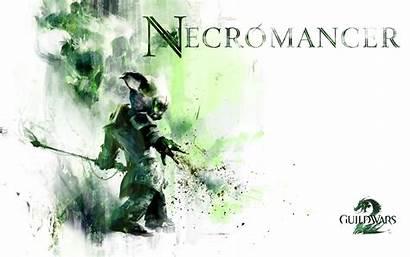 Necromancer Guildwars2 Gw2 Asura Wallpapers Professions