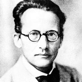 Erwin Schrödinger Google Doodle Pays Homage to 'Cat
