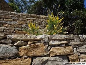 Construire Un Mur En Pierre : construire un muret de pierres s ches ~ Melissatoandfro.com Idées de Décoration