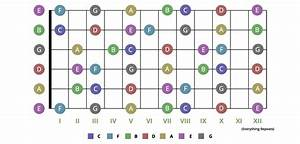 Easiest Guide To Learning The Notes On Your Guitar