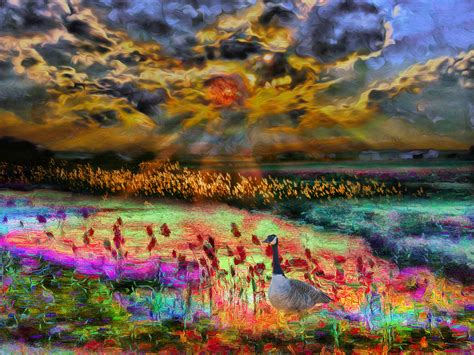 Colorful Landscape Hows This For A Colorful Landscape