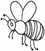 Bee Outline Honey Coloring Pages Beehive Drawing Clip Bees Hive Insects Printable Coloringsky Getdrawings Sheet Sky Getcolorings sketch template