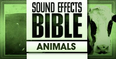 animals cinematic fx sample cd animal sounds film sfx