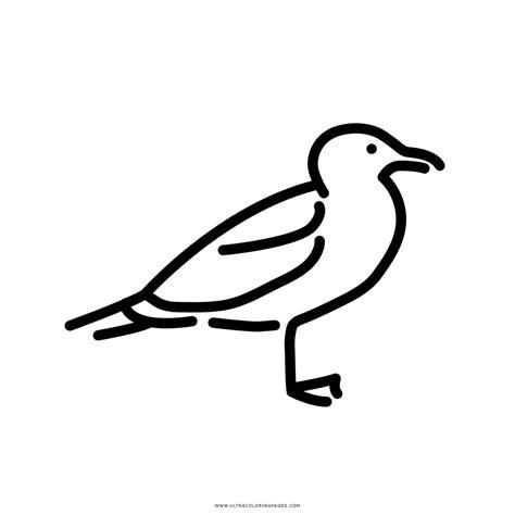 Disegno Gabbiano - gabbiano disegni da colorare ultra coloring pages