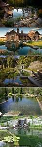 Un escalier dans le jardin les talus nouvelles for Amazing piscine pool house des idees 10 amenagement jardin paysager autour dune piscine 40 idees