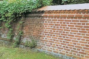 Dehnungsfugen Klinker Versiegeln : steinreinigung schubert ~ Articles-book.com Haus und Dekorationen