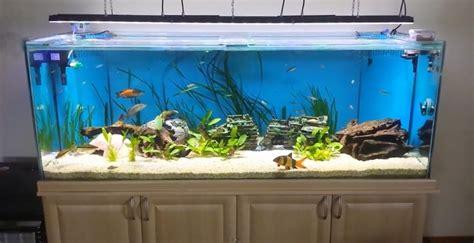 led aquarium lighting planted tank led lighting for planted aquarium roselawnlutheran