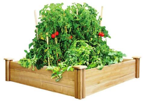Greenes Raised Garden Bed by Cedar Raised Garden Beds