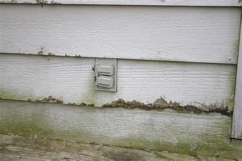 dont    home inspection  purchasing
