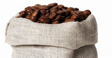 High germination coffee seeds for planting coffea is a genus of flowering plants whose seeds, called coffee beans, are used to make various coffee beverages and products. Are Coffee Beans Seeds? - The Cookful