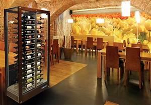 Cave A Vin Occasion : avoir du bon vin c est bien le conserver c est mieux ~ Premium-room.com Idées de Décoration
