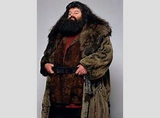 86 best images about Harry Potter Hagrid on Pinterest