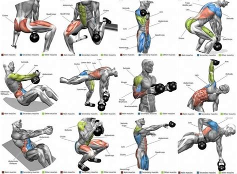 workout gym kettlebell exercises workouts fitness training ejercicios shoulder rutinas plan weight healthy entrenamiento musculation arm kettle amzn body kettlebells