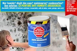 Peinture Pour Mur Humide : peinture anti humidit hydrofuge isolante cave mur humide ~ Dailycaller-alerts.com Idées de Décoration