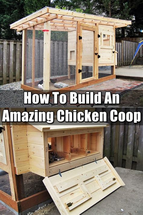 how to make chicken coop how to build an amazing chicken coop shtf prepping homesteading central