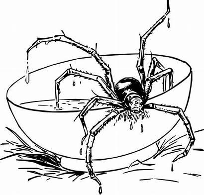 Spider Muffet Miss Clipart Clip Vector Clker