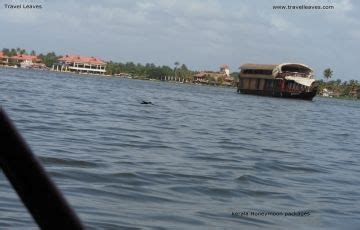 Munnar Boat House Price by Kerala House Boat Cruise Munnar Travel Package To
