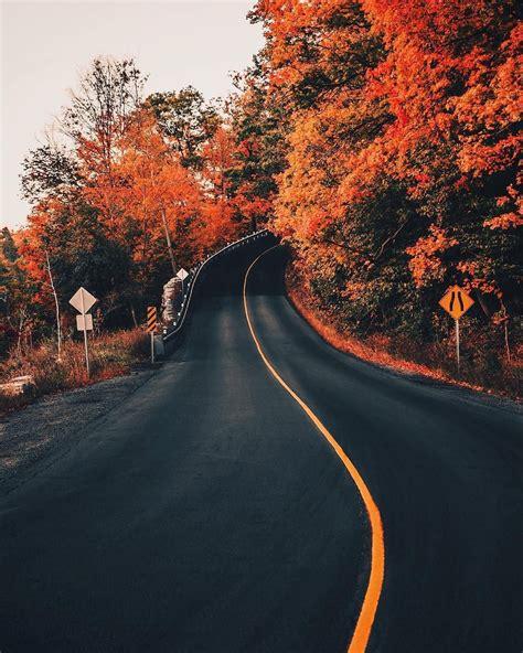 musica volksnrods  viajeseso kings autumn