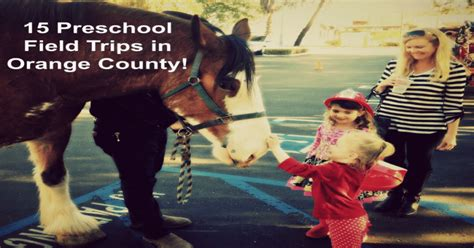 15 preschool field trips in orange county socal field trips 936 | best preschool field trips in orange county california