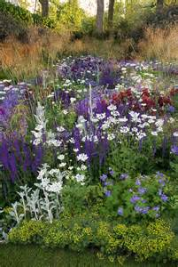 Purple and White Perennial Garden