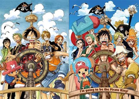 Straw Hat Crew- Before And After 2 Years