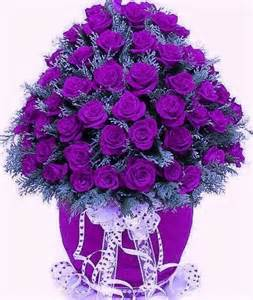 Pretty Purple Roses | Flowers | Pinterest | Beautiful ...